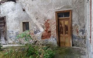 Feuchte Mauern